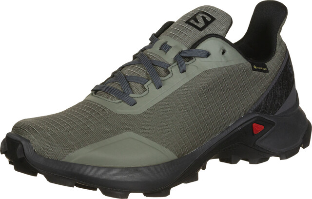 Salomon Alphacross GTX Shoes Men gray